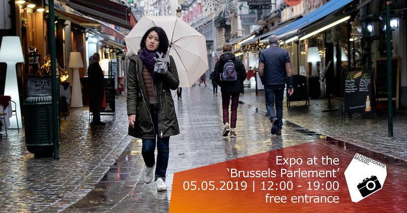 Expo Brussels Parlement Irisfeest Groot.jpg
