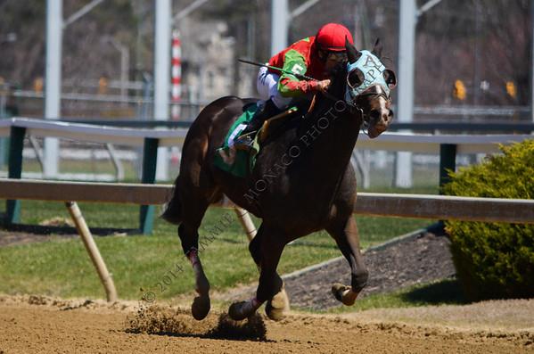 Chasin' for Children Pony Races 040614