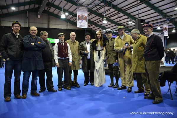 RIAC National Irish Classic Car Show 2013