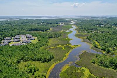 Gautier Waterways Vegetation Collection