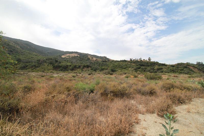 32633-Trabuco-Canyon-Rd-Mitchell-East-Trabuco-Canyon_45.JPG