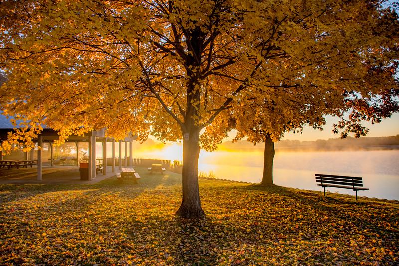 Fall-color-WingfootLakeSP-Nov11j.jpg