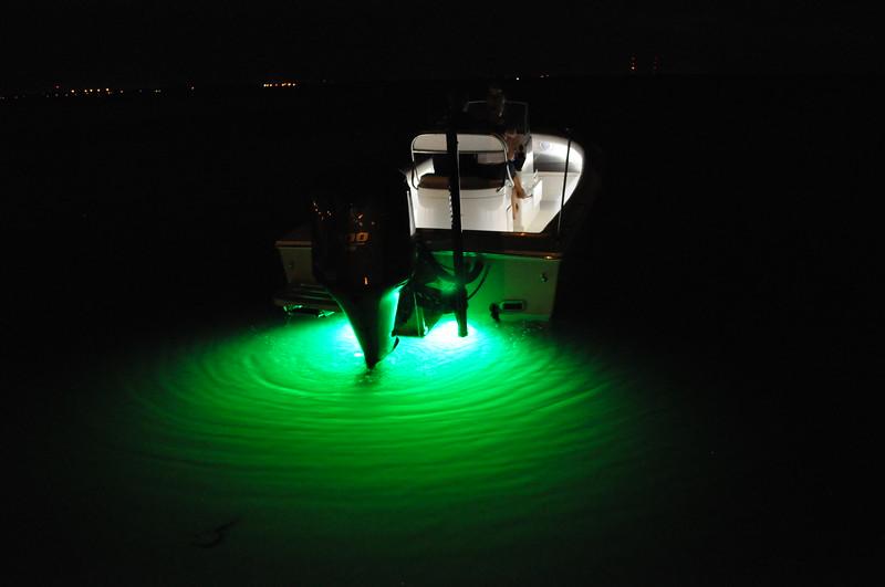 S247053-Underwater Shadow Caster Aqua Green