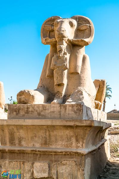 Karnak-03106.jpg