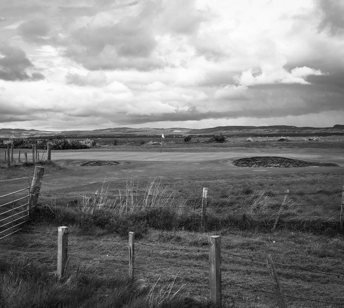 -tain-golf-photography-scotland-9239.jpg