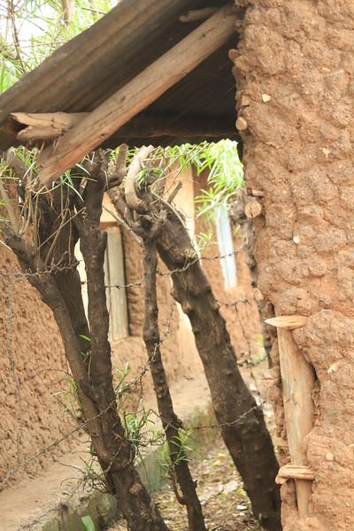 Kenya Part1 '15 453.JPG