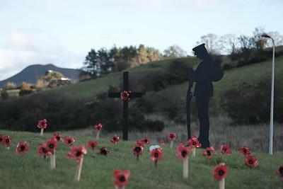 Images from folder 181101_Tweedbank Soldier