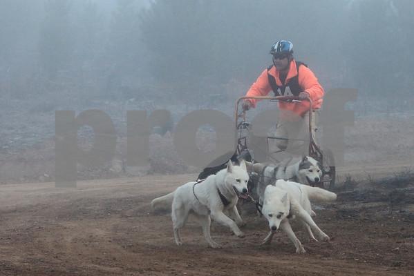 Kowen 2009 - Saturday 4 Dog Race
