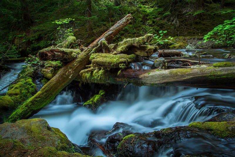 Panther Creek Falls, Columbia Gorge, Washington, USA