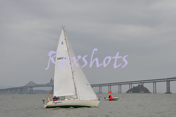Great Vallejo Race - Finish 5/5/13