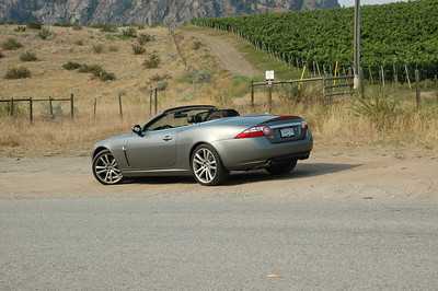 Gorgeous - Three days with an XK8 in Wine Country