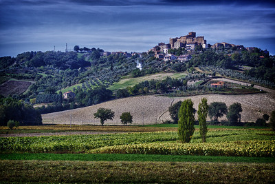 Orvieto Winery -- Umbria, Italy