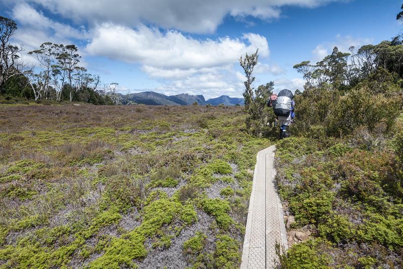 Tasmania_2015_143.jpg