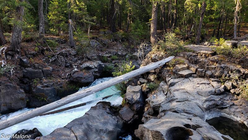 08-18-2020 Rogue River Gorge-9.jpg