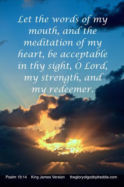 Psalms 19-14 d  .jpg