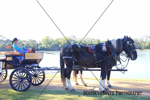 Llano Chuck Wagon Cookoff 2012