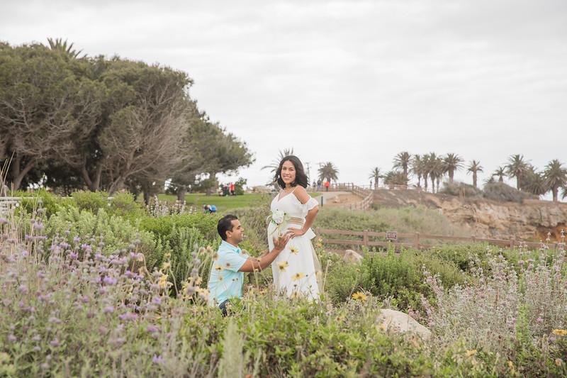 Maternity Shoot-1303.jpg