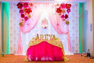 040717- Areya 5th Birthday party