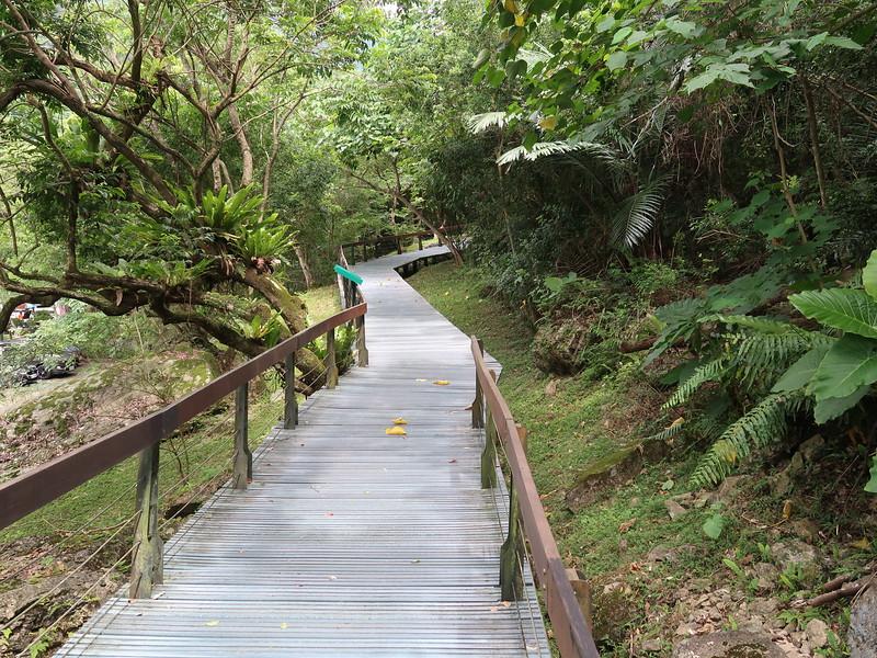 IMG_8885-dekalun-trail.JPG