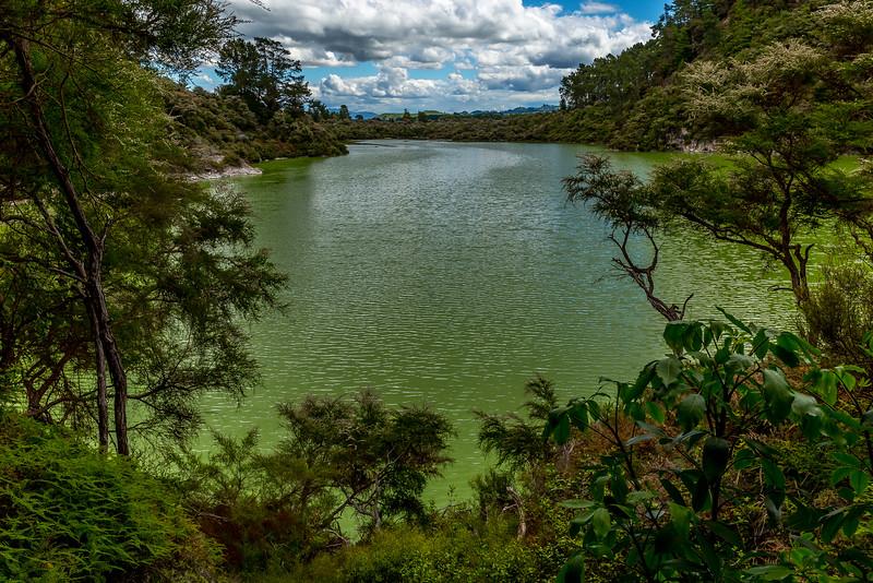 Wai-O-Tapu: Lake Ngakoro