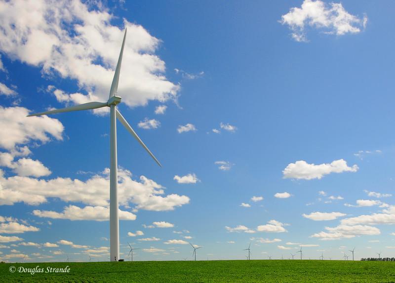 2010   Wind Farm