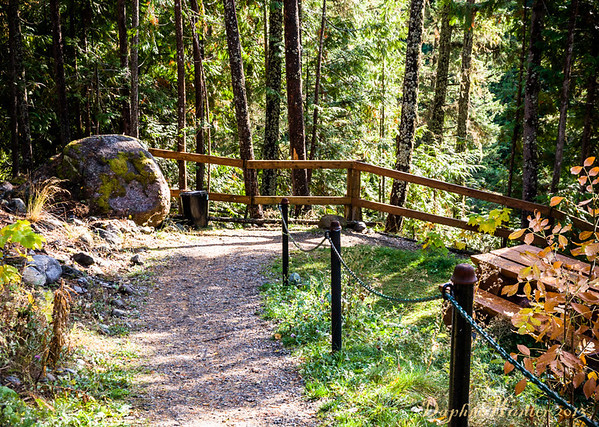 the trail leading to hiway access for Kaslo River Walk