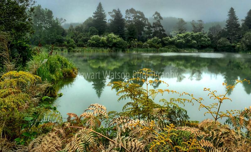 Lake Ngahewa, Waikato