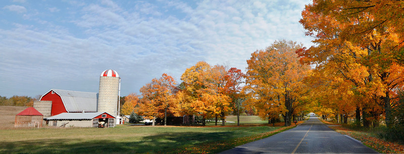 Michigan farm with fall color