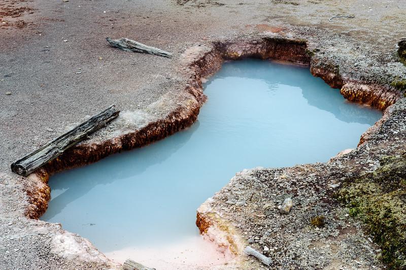 20130511-12 Yellowstone 093.jpg