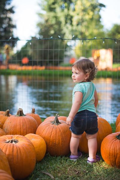 Stevies First Pumpkins-4431.jpg