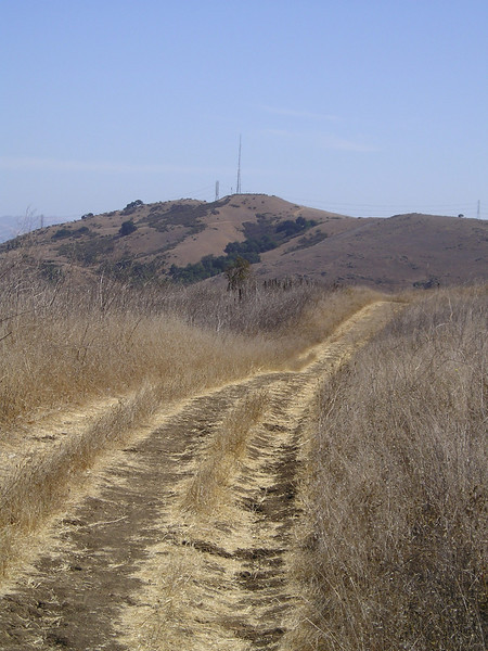 Most of the trails in the park are very wide.