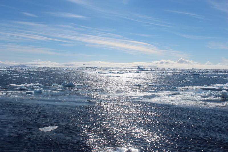 Antarctica 030.JPG