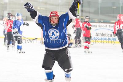 Snowbelt Tournament: Jamestown vs. East Aurora 1 Squirt 1-26-13