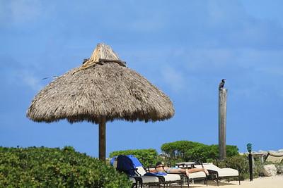 Hawk's Cay