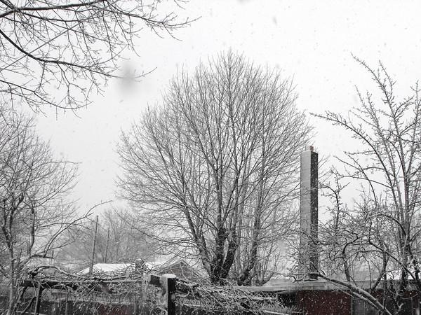 snow pics 3-30-10