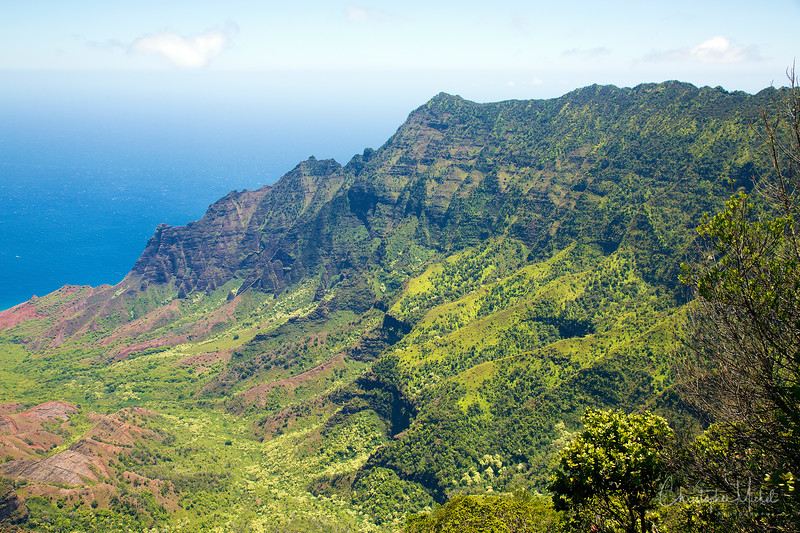 kauai2_20120714_2418.jpg