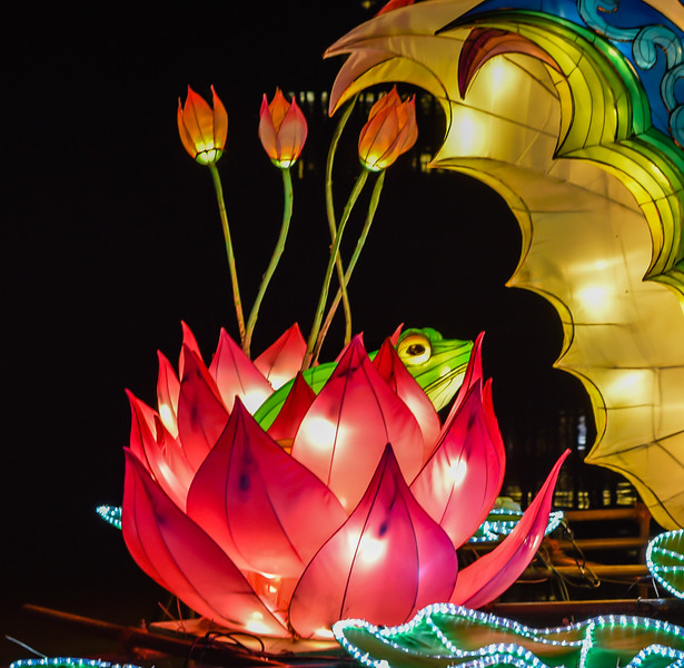 Chinese Lantern Festival-5297.jpg