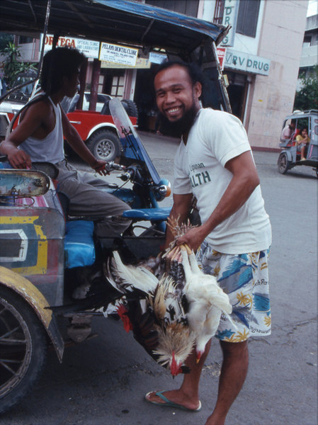batac'91.chicken man.jpg
