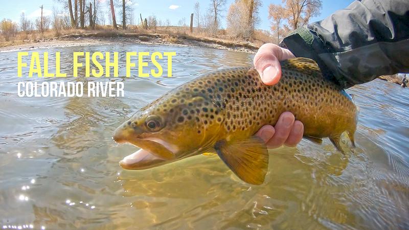 Fall Fish Fest Thumb Final.jpg