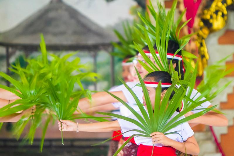 Bali sc2 - 229.jpg