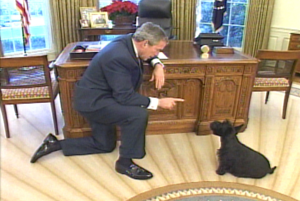 Description of . In this video image released by the White House, President Bush talks to his dog Barney in the Oval Office of the White House, asking him where in the White House is Miss Beazley?. Miss Beazley is the puppy that first lady Laura Bush was given last month by her husband as a birthday gift.  (AP Photo/White House)