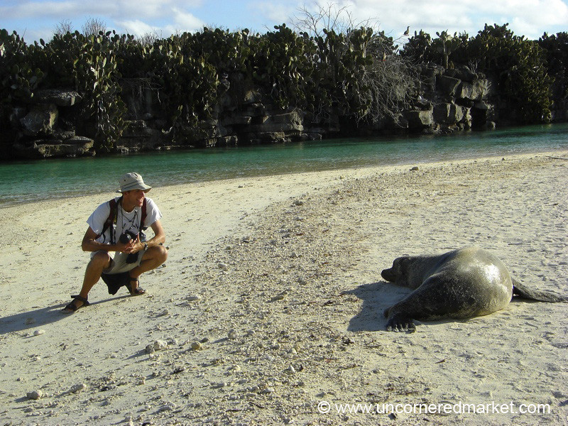 Checking Each Other Out - Galapagos Islands