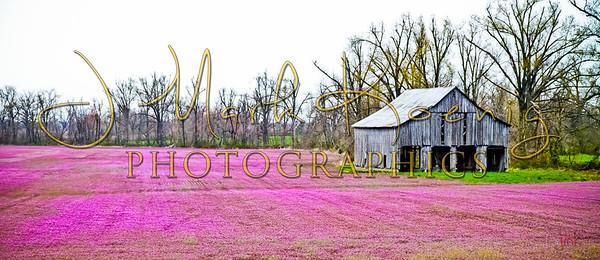 Graves County Barns 2011