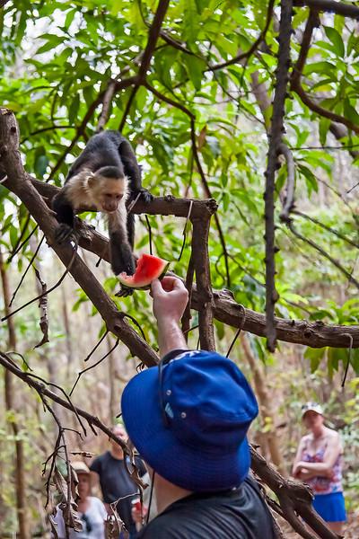 Costa Rica 2016 20160404-15-18-_MG_2475-006-Edit.jpg