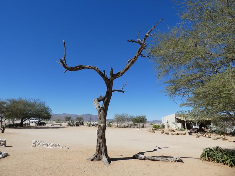 Namibia Lumix  (100).JPG