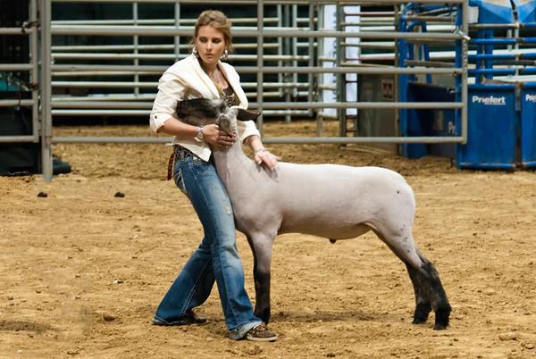 2012 02 08 Humble Livestock Show