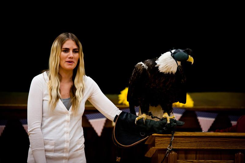 martin eagle-19.jpg