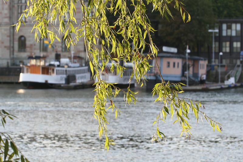 Skeppsholmen 178