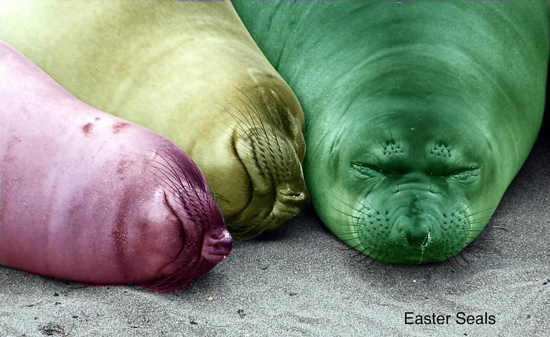 090514-Jamie-Foster-easter-seals.jpg