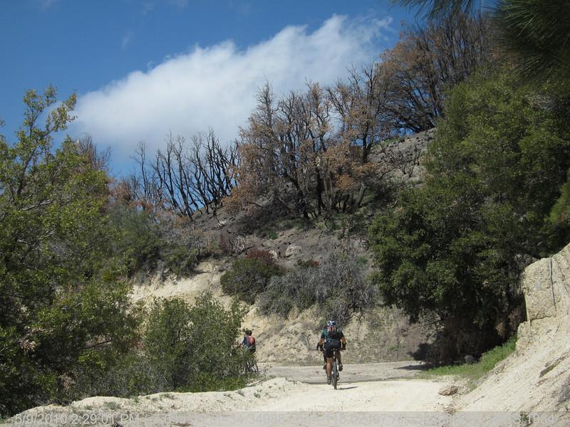 20100509179-Trail Recon, 3N14 Fire Road.JPG